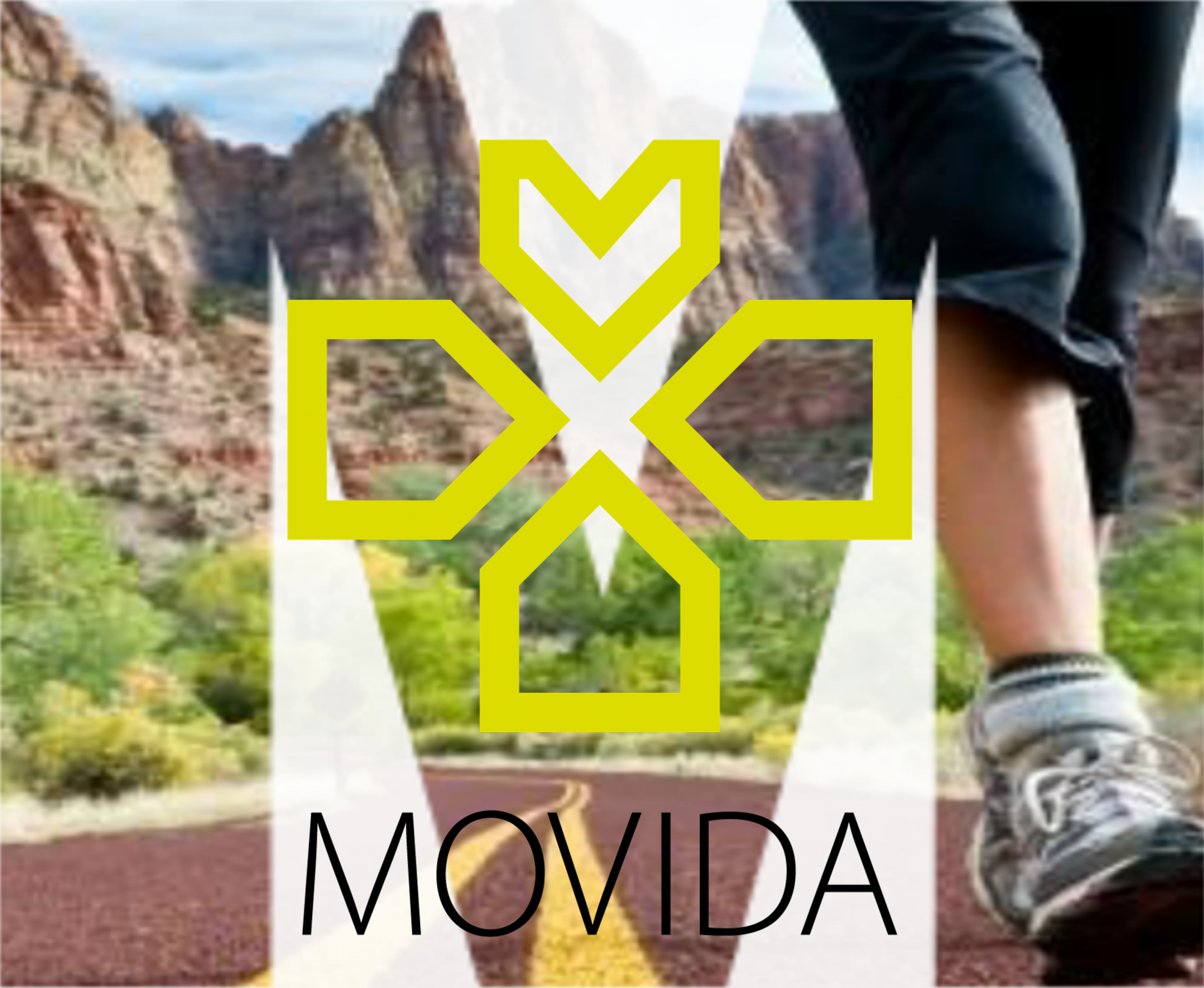 MOVIDA - Plataforma de MOnitorização da AtiVIDAde Física